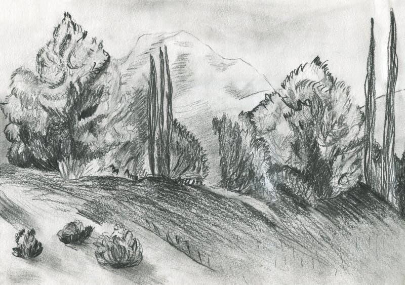 A ilustração de uma floresta foto de stock royalty free