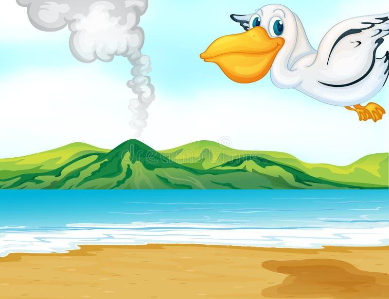 Uma praia do vulcão e um pássaro de vôo ilustração stock