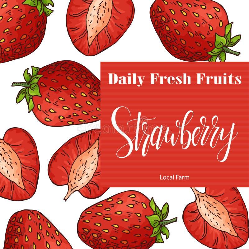 Ilustração desenhada mão da fruta Elemento doce da morango Esboço do vetor para o cartão ou o cartaz ilustração royalty free