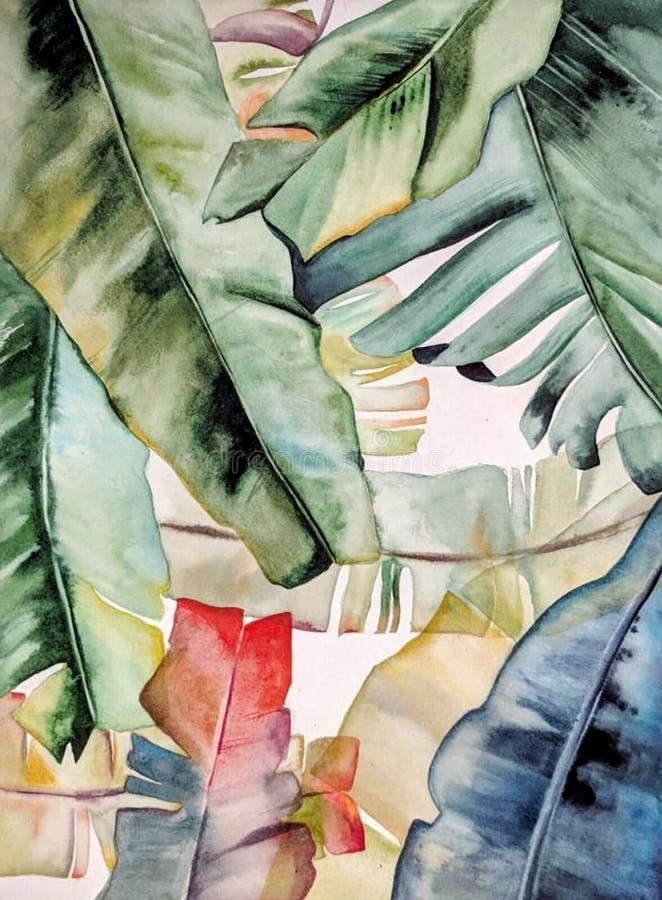 Ilustração desenhado à mão da aquarela de plantas coloridas tropicais ilustração royalty free