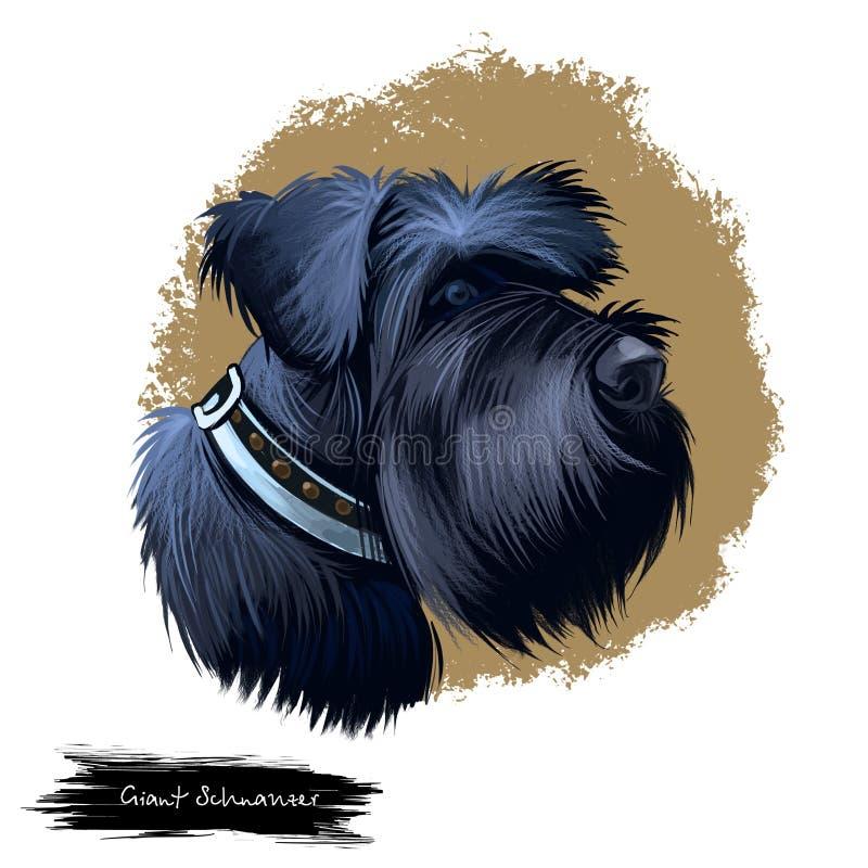 Ilustração digital da arte da raça do cão do Schnauzer gigante isolada no branco Retrato popular do cachorrinho com texto Mão bon ilustração stock