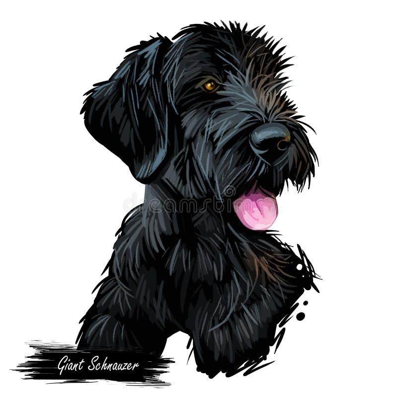 Ilustração digital da arte da raça do cachorrinho do cão do Schnauzer gigante isolada no branco Retrato popular do cachorrinho co ilustração royalty free