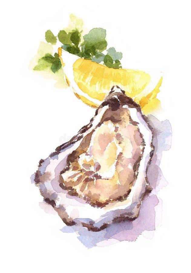 Ilustração do alimento da aquarela das cunhas de limão das ostras pintado à mão ilustração do vetor