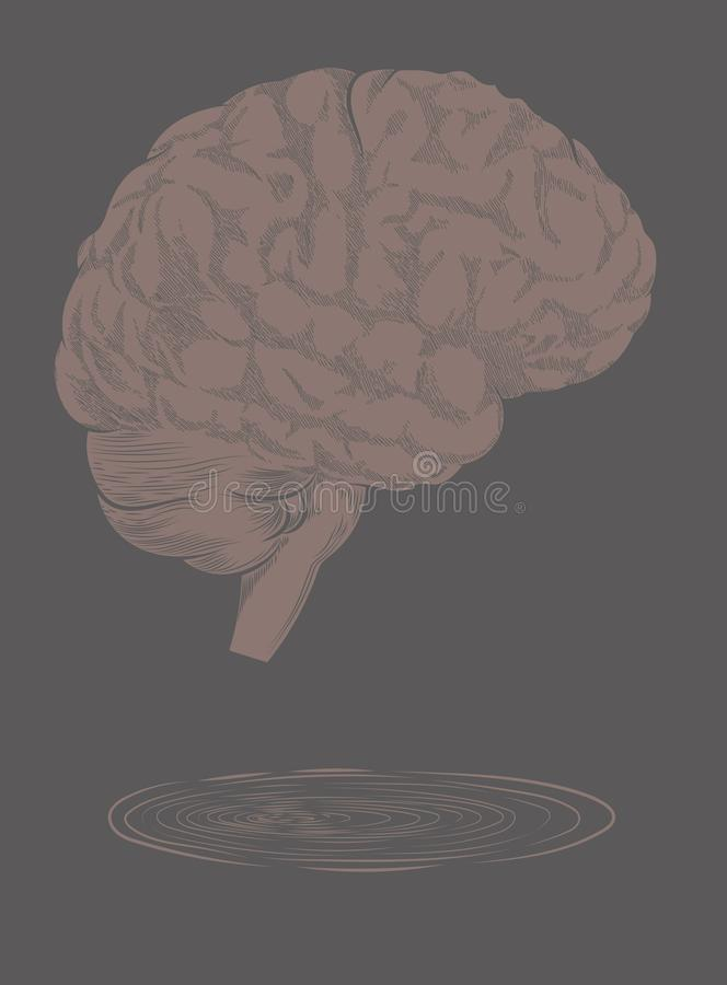 Ilustração do cérebro da gravura ilustração stock