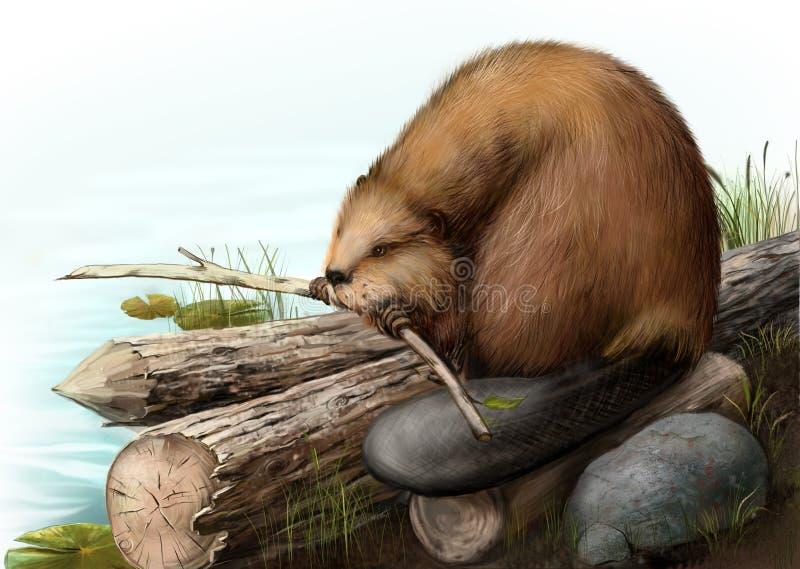 Ilustração do castor que senta-se em um registro ilustração stock