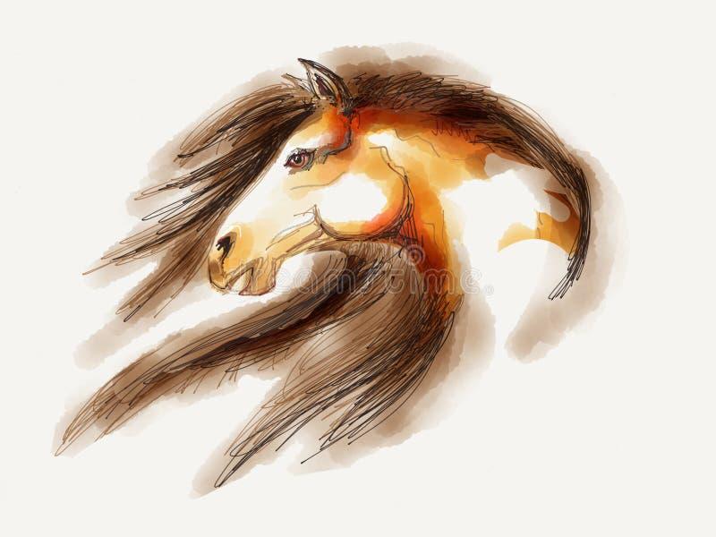 Ilustração do cavalo foto de stock