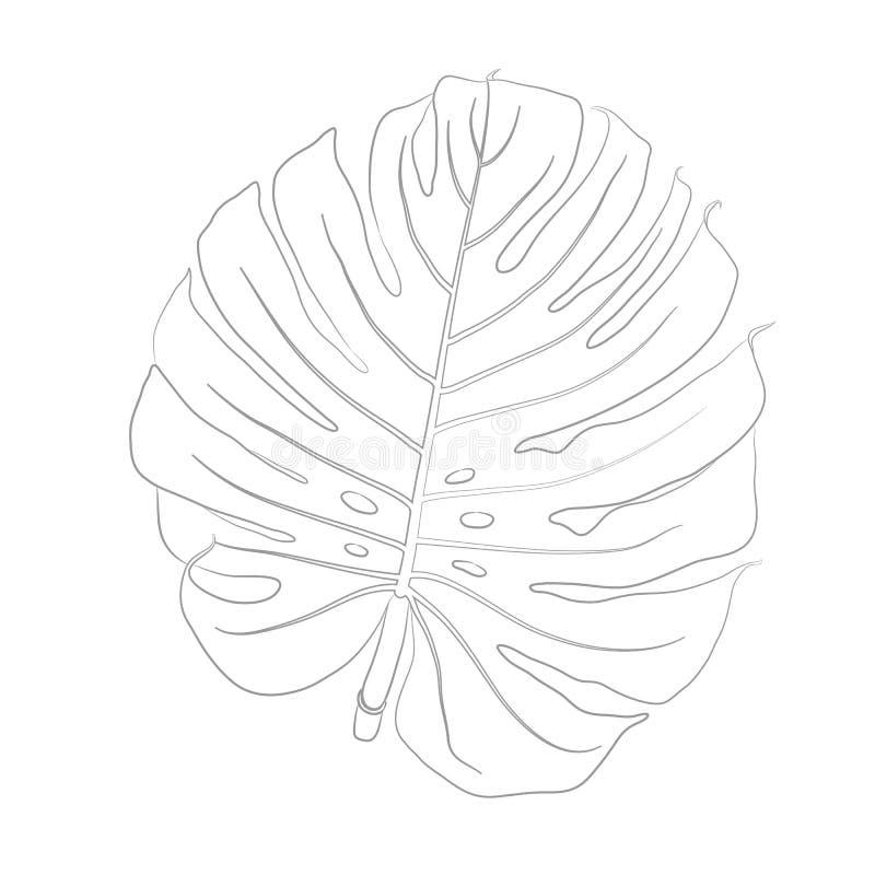Ilustração do contorno do vetor de Monstera para o livro para colorir ilustração stock