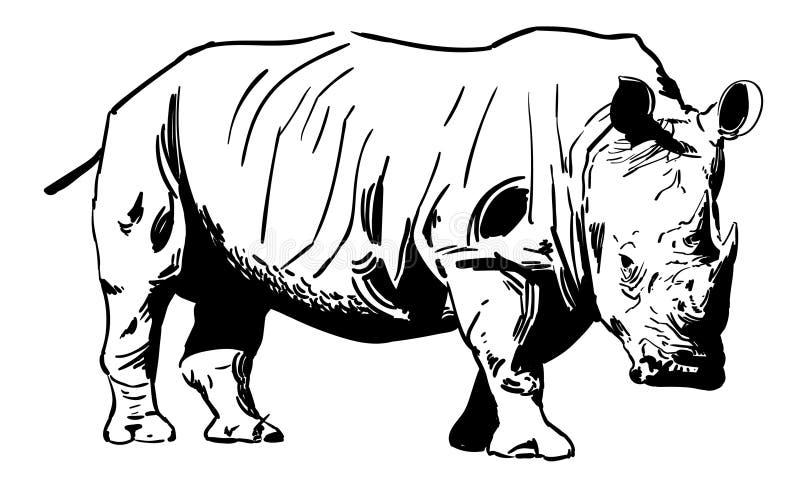 Ilustração do eps do vetor do rinoceronte do rinoceronte por crafteroks ilustração stock