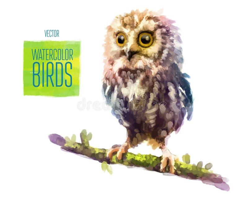 Ilustração do estilo da aquarela do vetor do pássaro ilustração royalty free