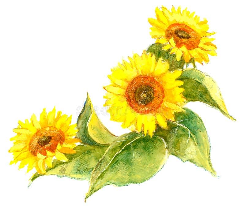 Ilustração do girassol fotografia de stock