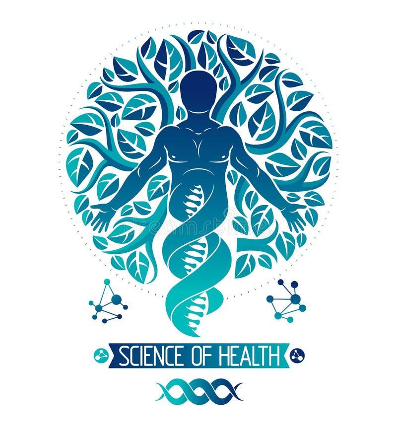 Ilustração do gráfico de vetor do ser humano muscular descrita como o ADN sy ilustração stock