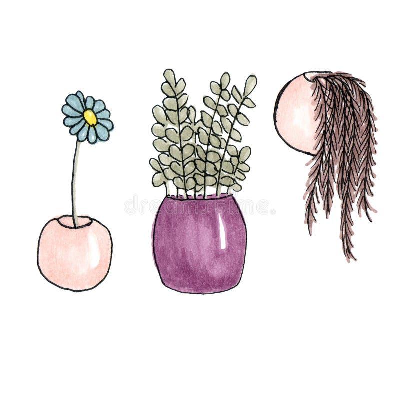 Ilustração do grupo dos marcadores do esboço de flores internas ilustração do vetor