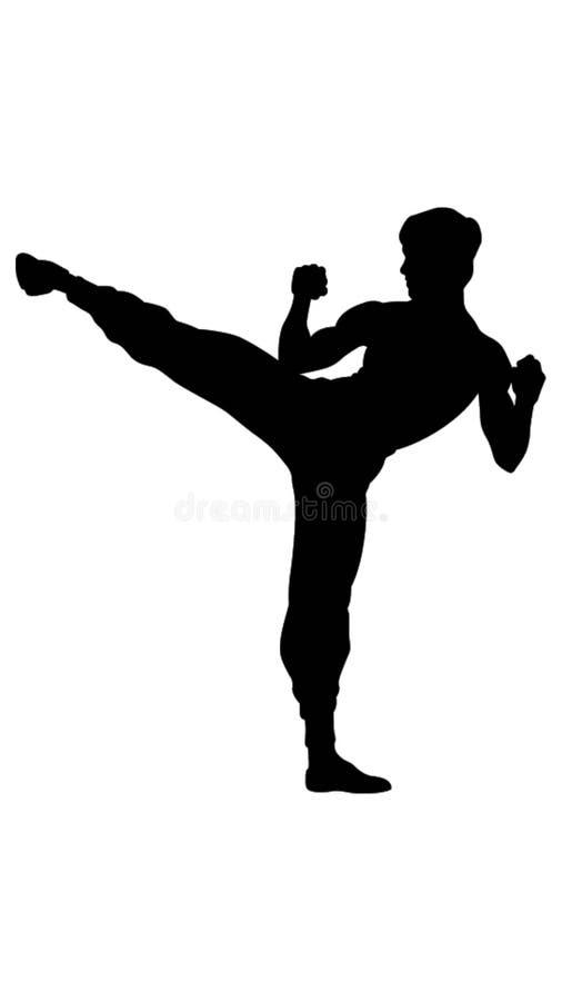 Ilustração do instrutor das artes marciais ilustração royalty free