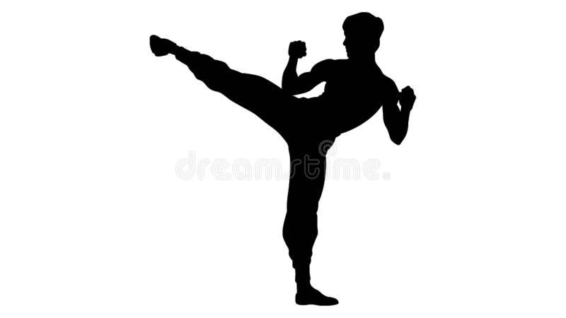 Ilustração do instrutor das artes marciais ilustração stock