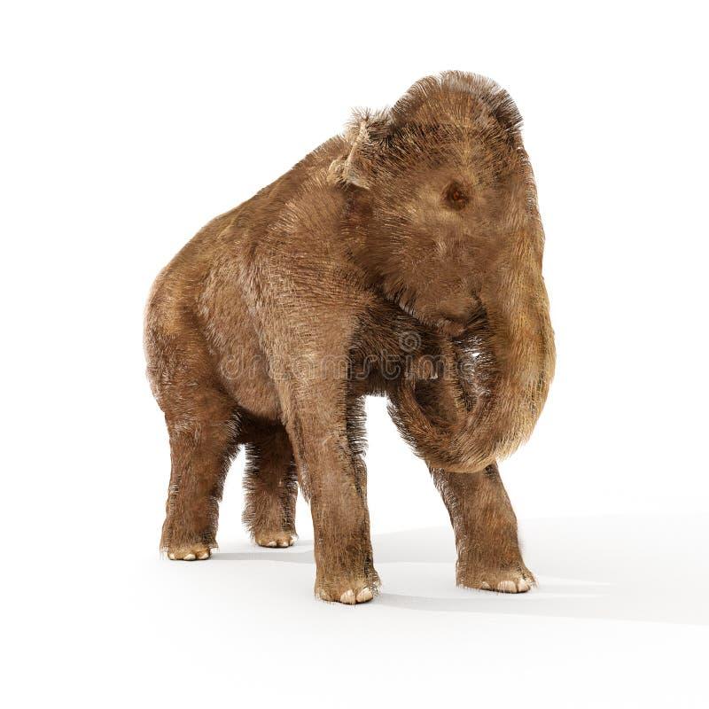 Ilustração do Mammoth felpudo do bebê ilustração do vetor