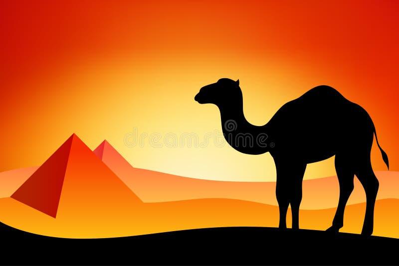 Ilustração do nascer do sol do por do sol da natureza da paisagem da silhueta do camelo de Egito ilustração stock