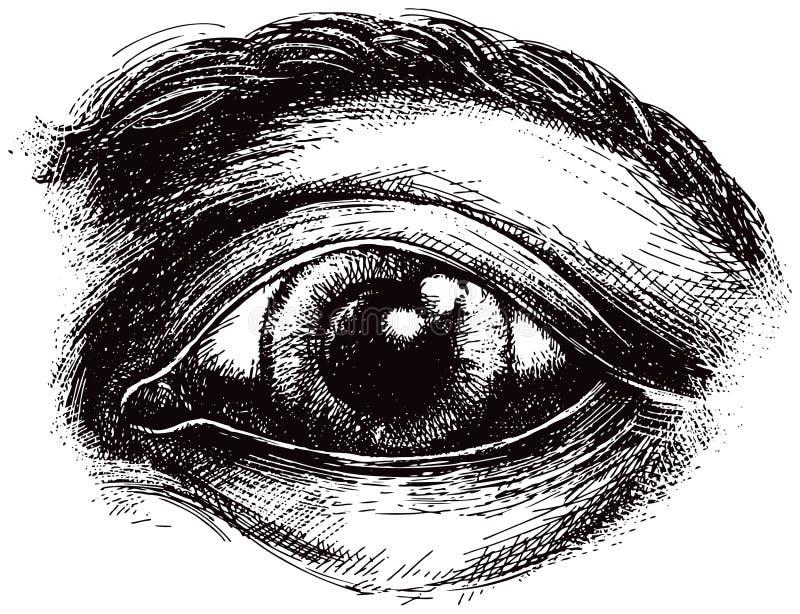 Ilustração do olho ilustração royalty free