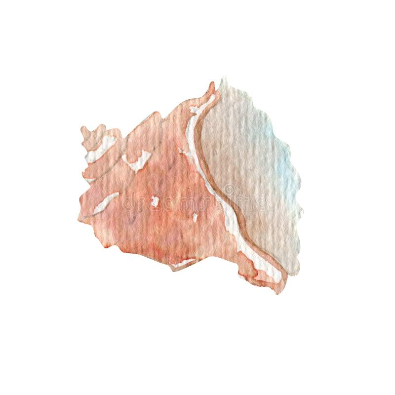 Ilustração do shell do curso do verão da aquarela ilustração royalty free