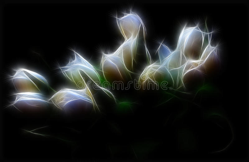 Ilustração do Tulip imagens de stock royalty free