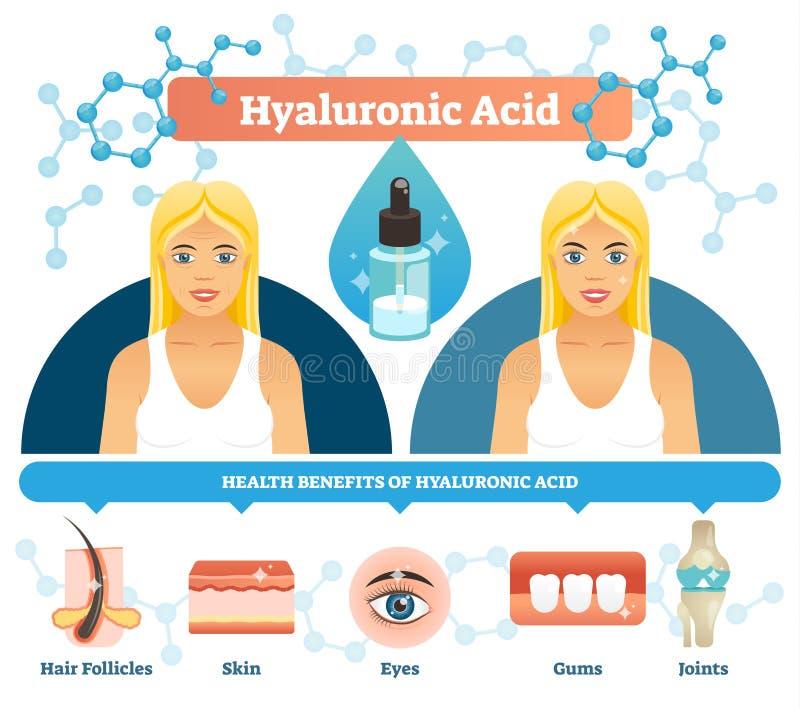 Ilustração do vetor do ácido hialurónico Benefícios de saúde antienvelhecimento da pilha ilustração royalty free