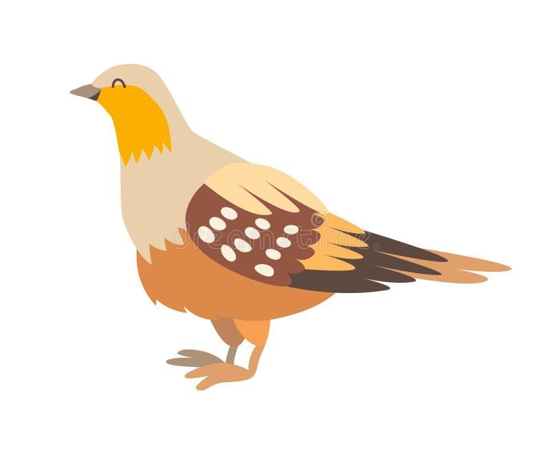 Ilustração do vetor do ícone do galo silvestre de areia Estilo dos desenhos animados ilustração do vetor