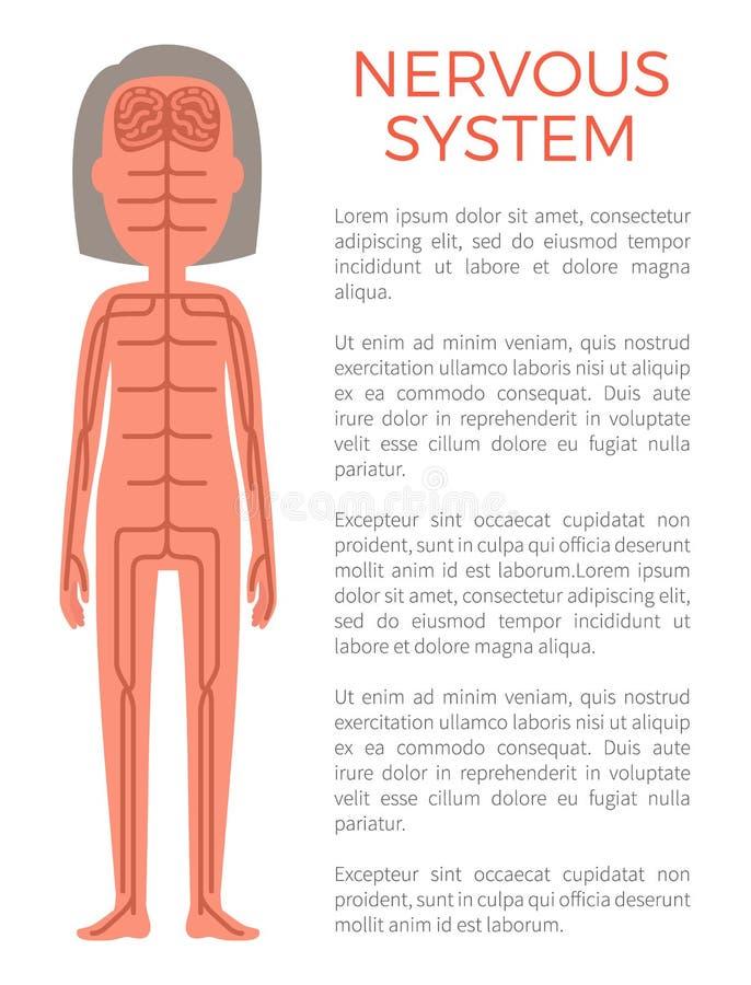 Ilustração do vetor do cartaz e do texto do sistema nervoso ilustração do vetor