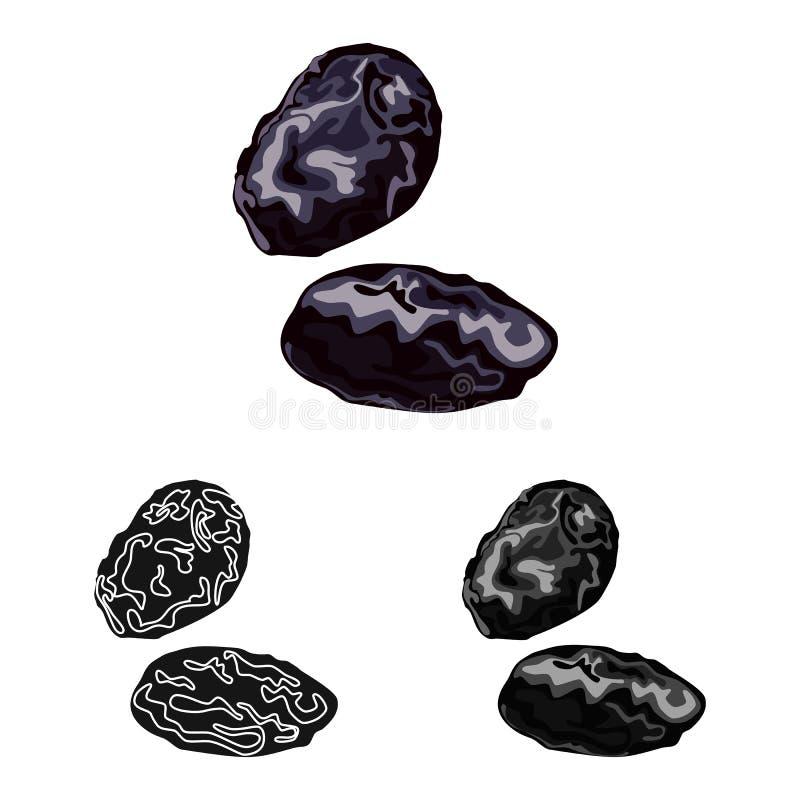 Ilustração do vetor da ameixa e do ícone seco Coleção da ameixa e da ilustração conservada em estoque madura do vetor ilustração do vetor