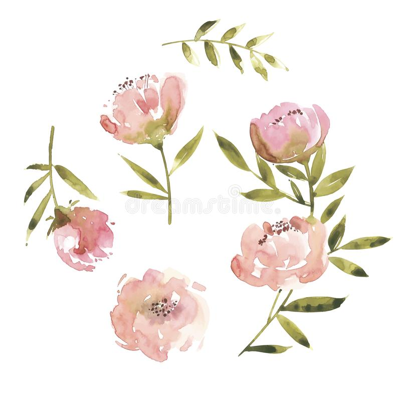 Ilustração do vetor da aquarela das flores Sira de mãe ao dia de s, casamento, aniversário, Páscoa, dia do Valentim s ilustração stock
