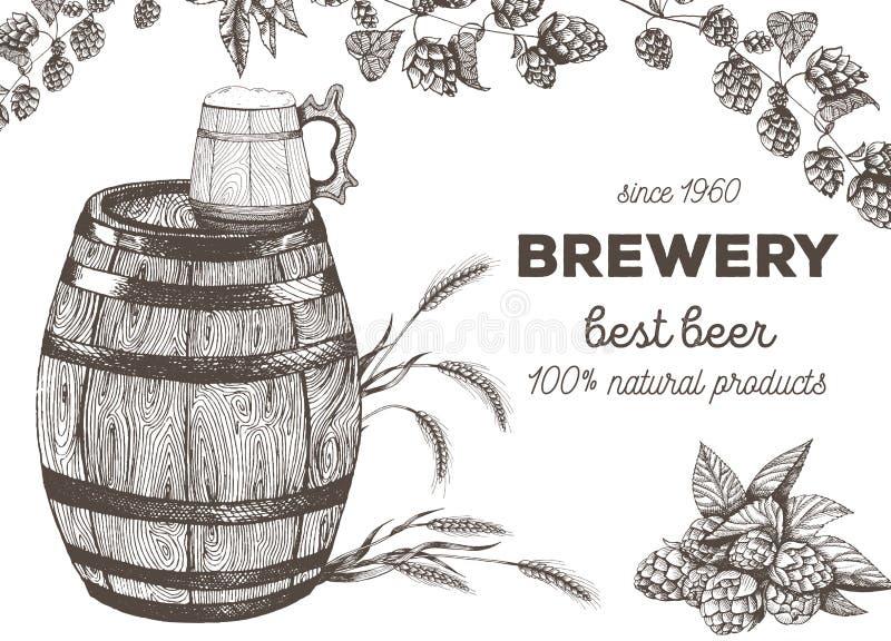 Ilustração do vetor da cerveja Matéria prima para fabricar cerveja: lúpulos e cevada do ramo Grupo do menu do bar ilustração do vetor