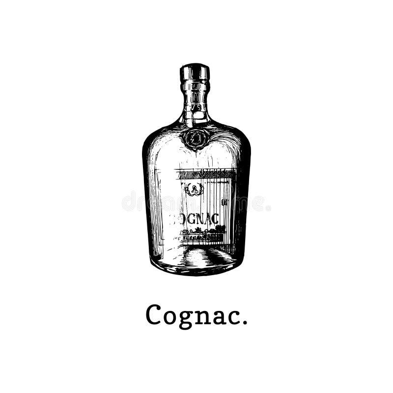 Ilustração do vetor da garrafa do conhaque Entregue o esboço tirado da bebida alcoólica para o café, etiqueta da barra, menu do r ilustração royalty free