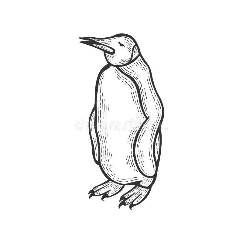 Ilustração do vetor da gravura do esboço do pássaro do pinguim ilustração do vetor