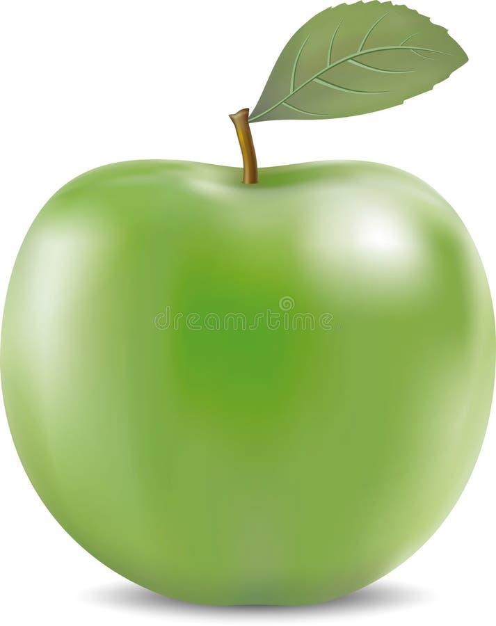 Ilustração do vetor da maçã verde grande ilustração royalty free