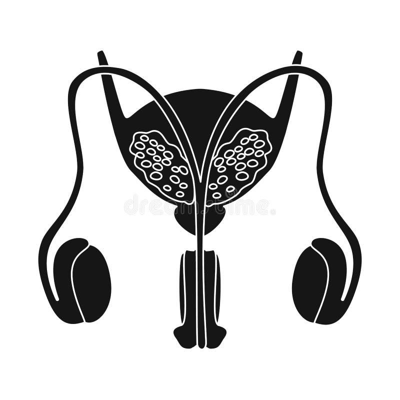Ilustração do vetor da pesquisa e do símbolo do laboratório Ajuste da pesquisa e da ilustração do vetor do estoque do órgão ilustração royalty free