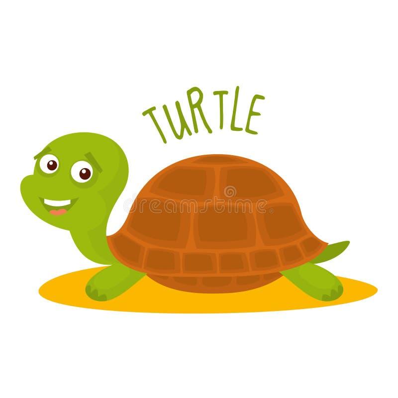 Ilustração do vetor da tartaruga isolada ilustração royalty free