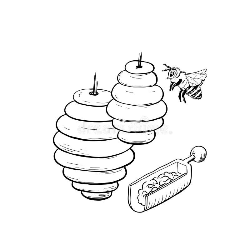 Ilustração do vetor de Honey Sketch Bee Hive Isolated para Logo Design ou o cartaz ilustração do vetor