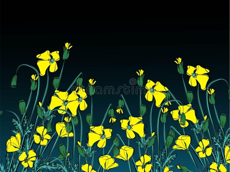 Ilustração do vetor de papoilas amarelas do estado de Califórnia ilustração do vetor