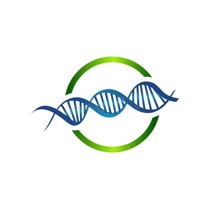 Ilustração do vetor de uma costa do ADN da hélice dobro ilustração royalty free