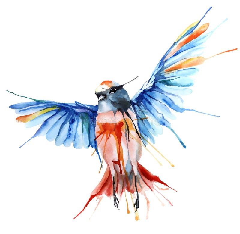 ilustração do vetor do Aquarela-estilo do pássaro ilustração royalty free