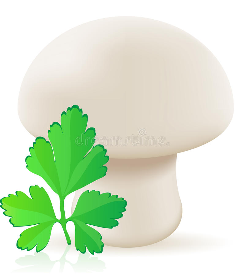 Ilustração do vetor do cogumelo do cogumelo ilustração stock