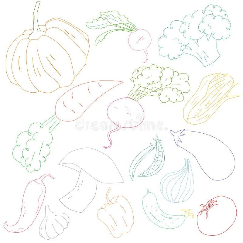 Ilustração do vetor do esboço da cor dos vegetais ilustração stock