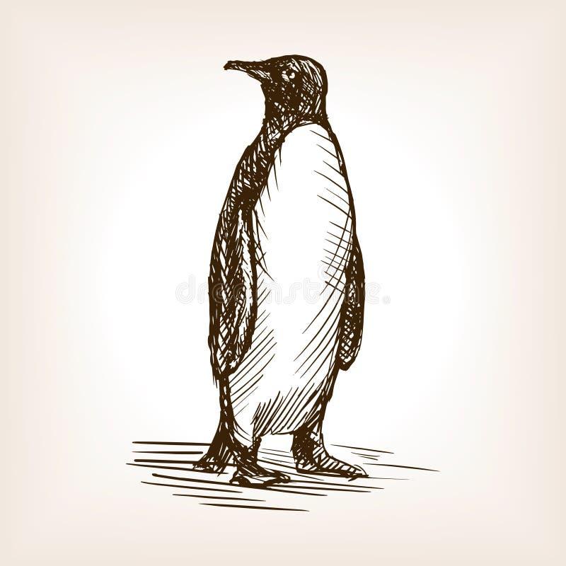Ilustração do vetor do esboço do pinguim ilustração do vetor