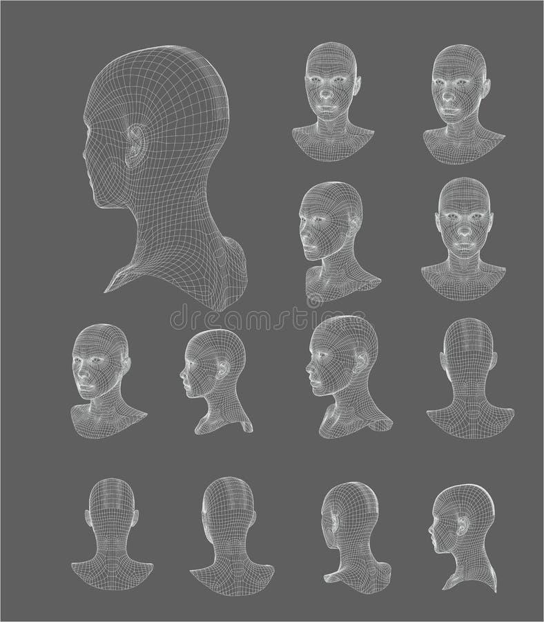 Ilustração do vetor do modelo da cabeça 3d de Wireframe ilustração royalty free
