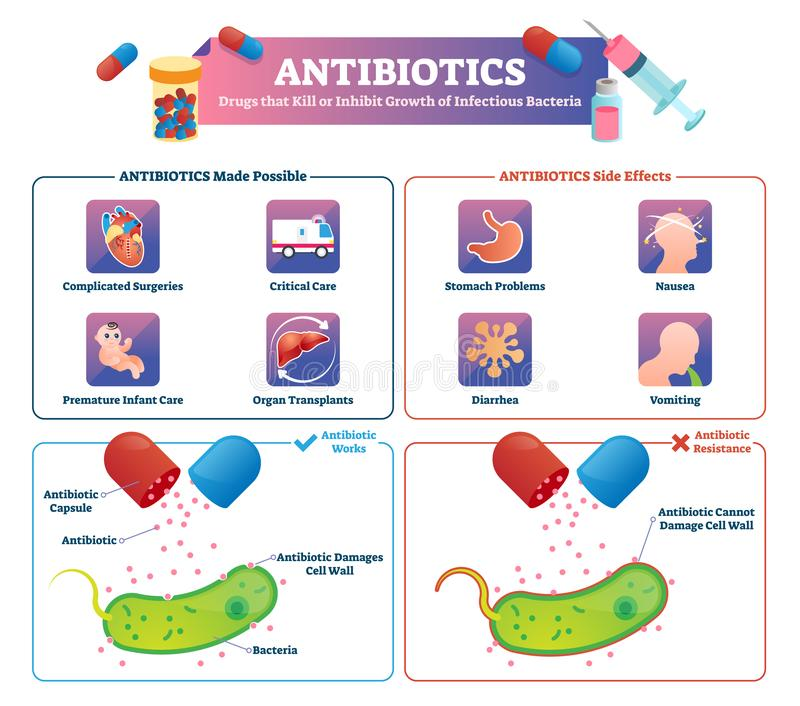 Ilustração do vetor dos antibióticos Esquema etiquetado do tratamento da medicamentação da saúde ilustração do vetor