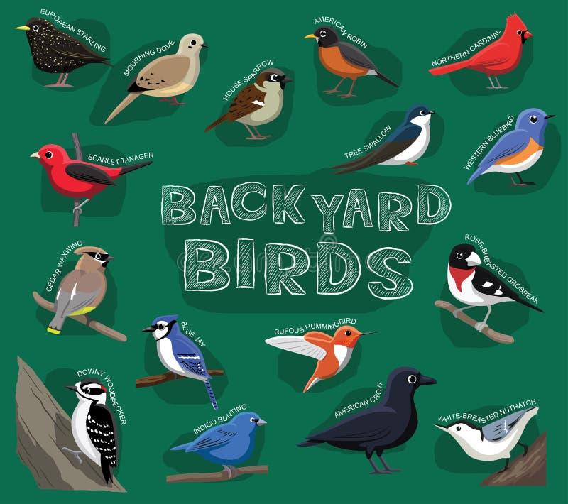 Ilustração do vetor dos desenhos animados dos pássaros do quintal ilustração royalty free