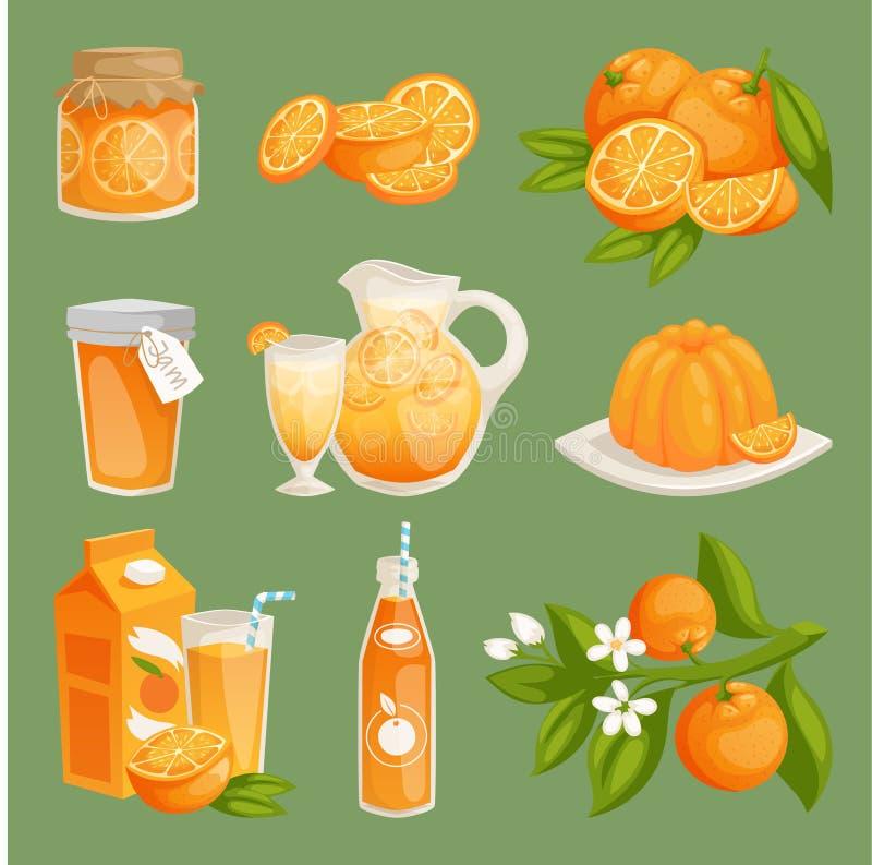 Ilustração do vetor dos produtos alimentares do suco de laranjas Grupo alaranjado natural fresco da fatia dos citrinos Sobremesa  ilustração royalty free