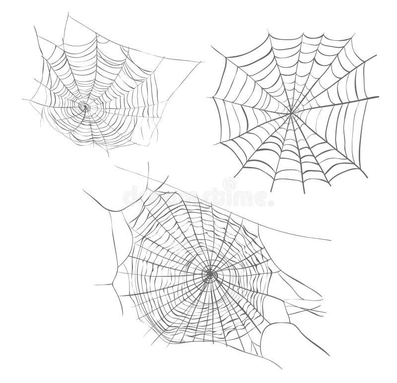 Ilustração do vetor do esboço de Spiderweb ilustração stock
