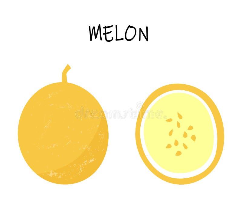 Ilustração do vetor do melão amarelo - um inteiro e um cortado ilustração stock