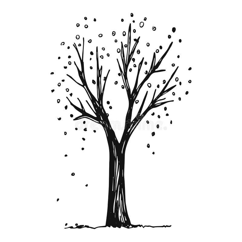 Ilustração do vetor do outono da árvore esboço ilustração do vetor