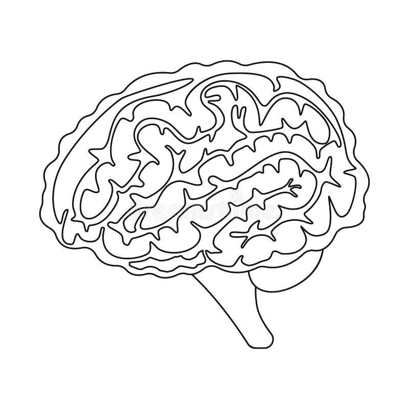 Ilustração do vetor do sinal da anatomia e do órgão Coleção da anatomia e ícone médico do vetor para o estoque ilustração do vetor