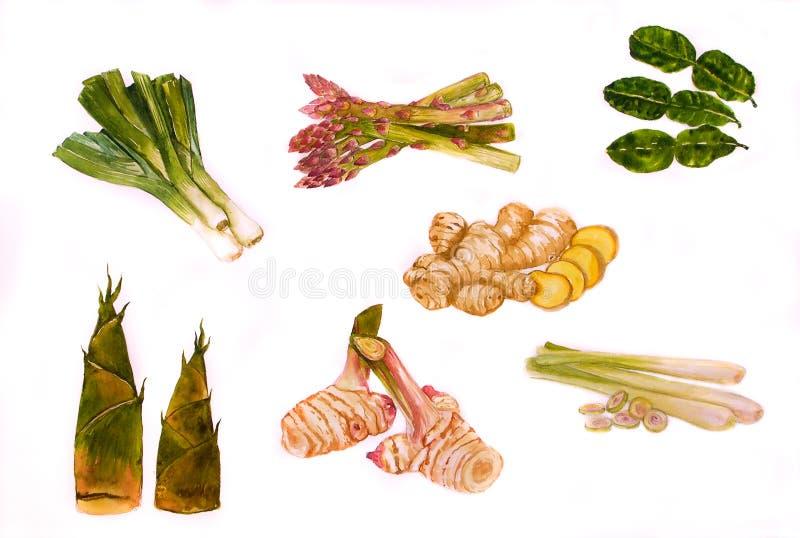 Ilustração dos backgronds de Vegetabl imagens de stock